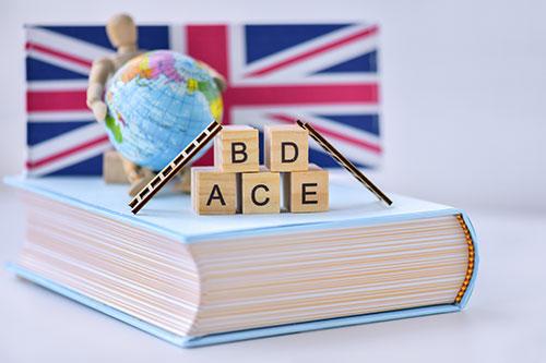 영어가 세계 공용어라면? 생각해봐야 할 문제들