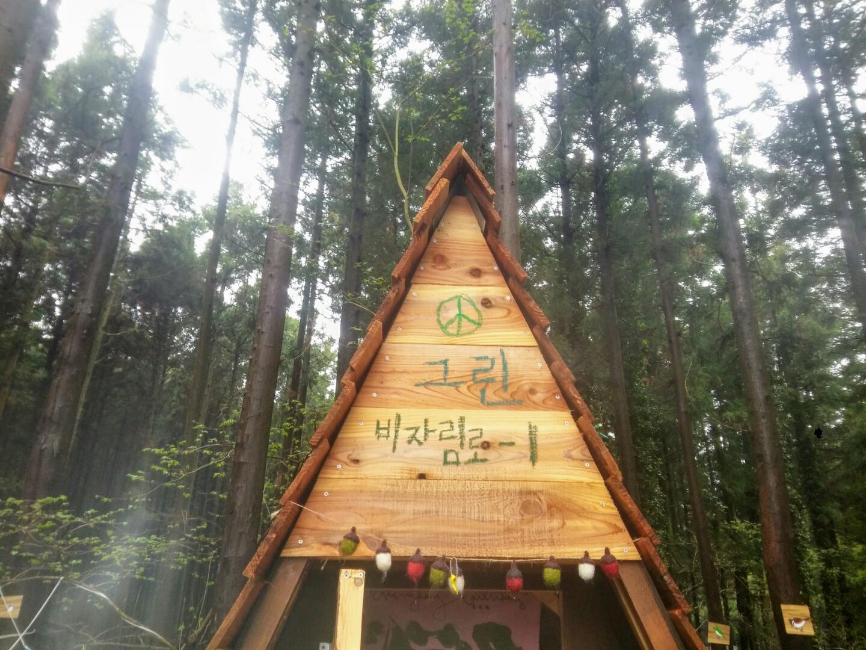 비자림 숲 1번지에서 보내는 편지
