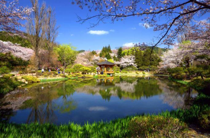 봄나들이 국내 여행, 어디가 좋을까?