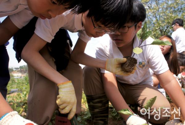 100% 자연주의 영어 환경, 에더블 - 예체능 통한 영어 훈련 인기