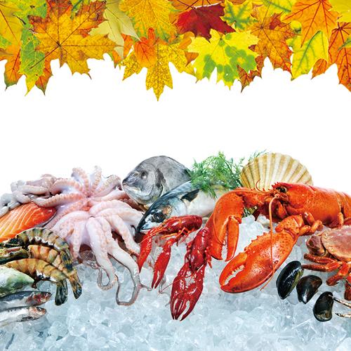가을 생선 도감